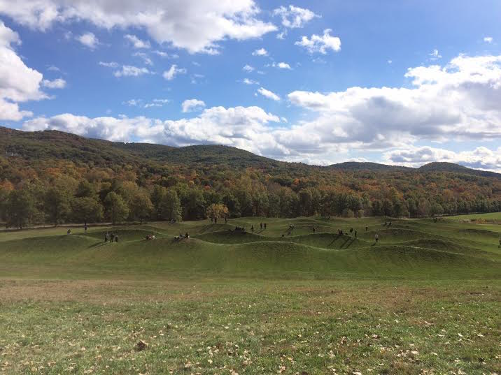Storm King Wavefield - Maya Lin - Tiffany Low