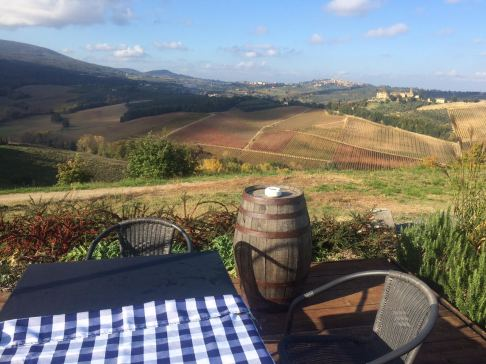 TUSCANY WINE TASTING VIEW