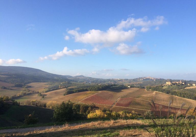 TUSCANY WINE TASTING VIEW2